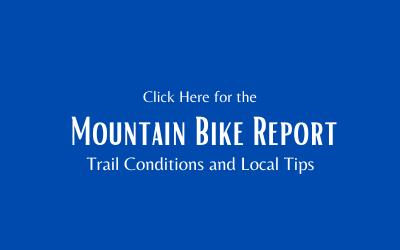 Mountain Bike Report