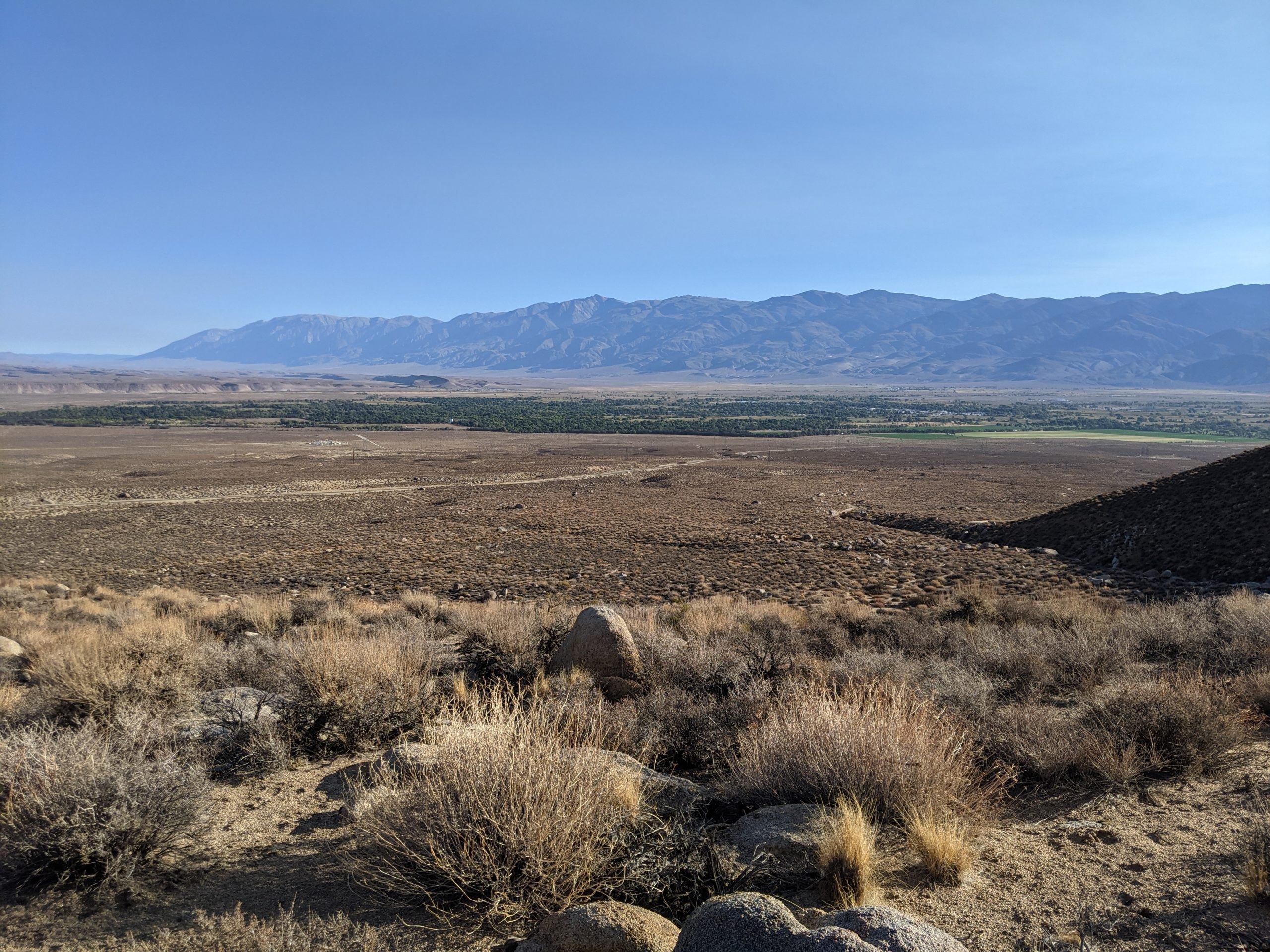 View from Chipmunk Canyon outside of Bishop