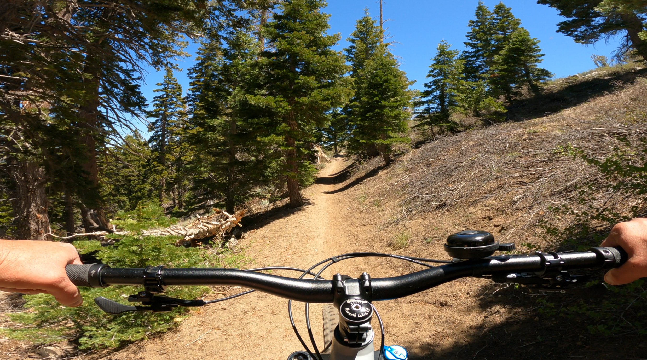 Mountain Biking on the Mammoth Rock Trail