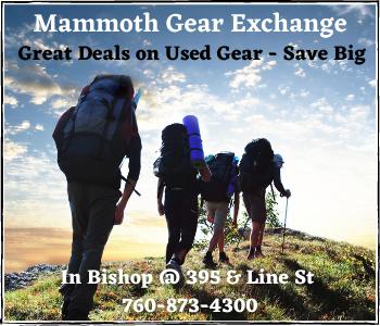 Mammoth Gear Exchange